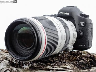 16年磨一劍 大白兔登場‧Canon EF 100-400mm f/4.5-5.6L IS II USM