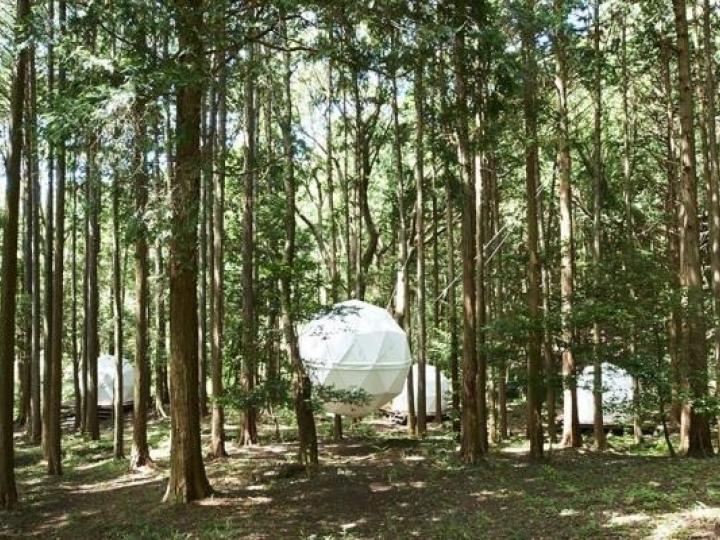 [海外快訊]今晚就在公園裡面睡覺吧!日本靜岡 INN THE PARK 推出懸浮式帳篷